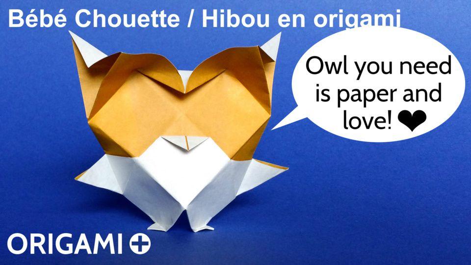 Bébé Chouette / Hibou