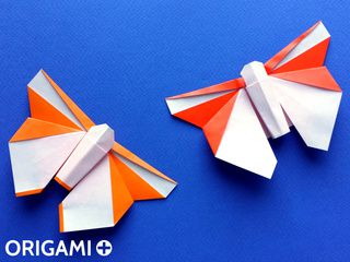 Origami Beautiful Butterfly