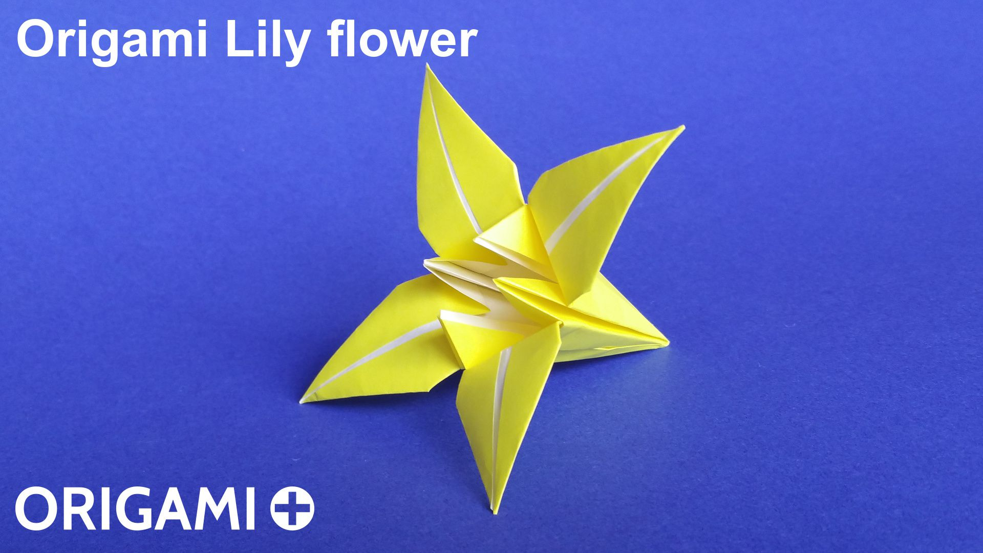 Origami Lily flower - photo#50