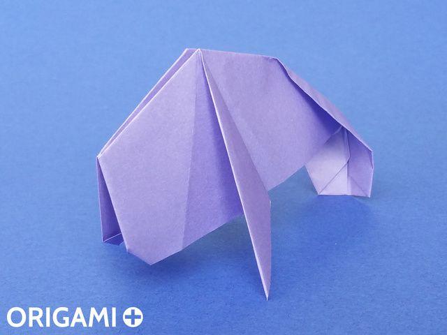 peixe-boi - passo 23