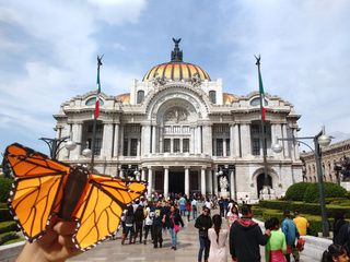 Stunning Origami Monarch Butterfly in Mexico City