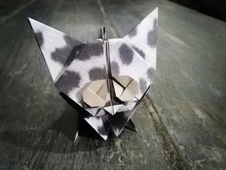 Cute white and black kitten by Origami Invasion